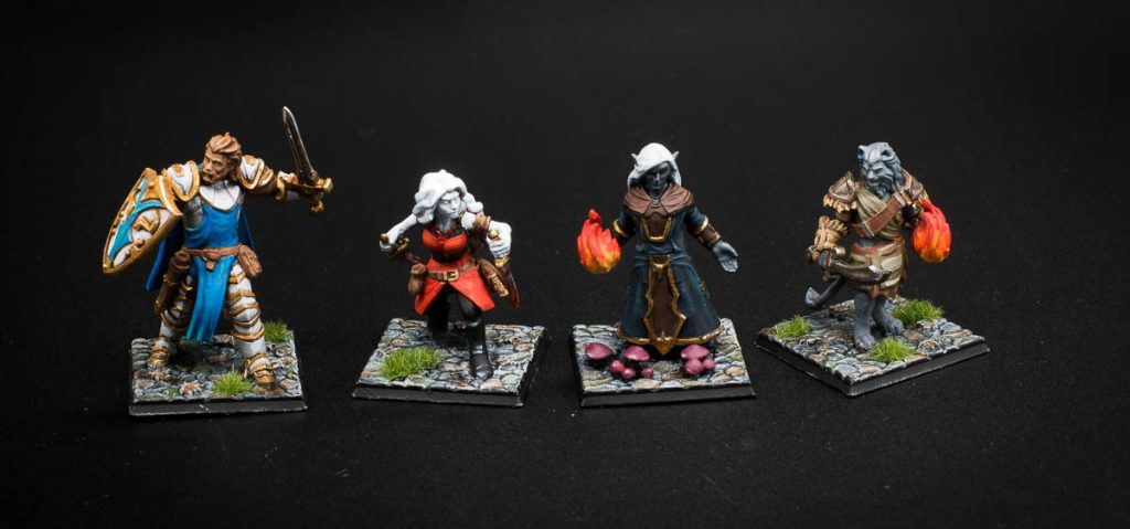 dungeons and dragons miniatures warlock druid thief fighter